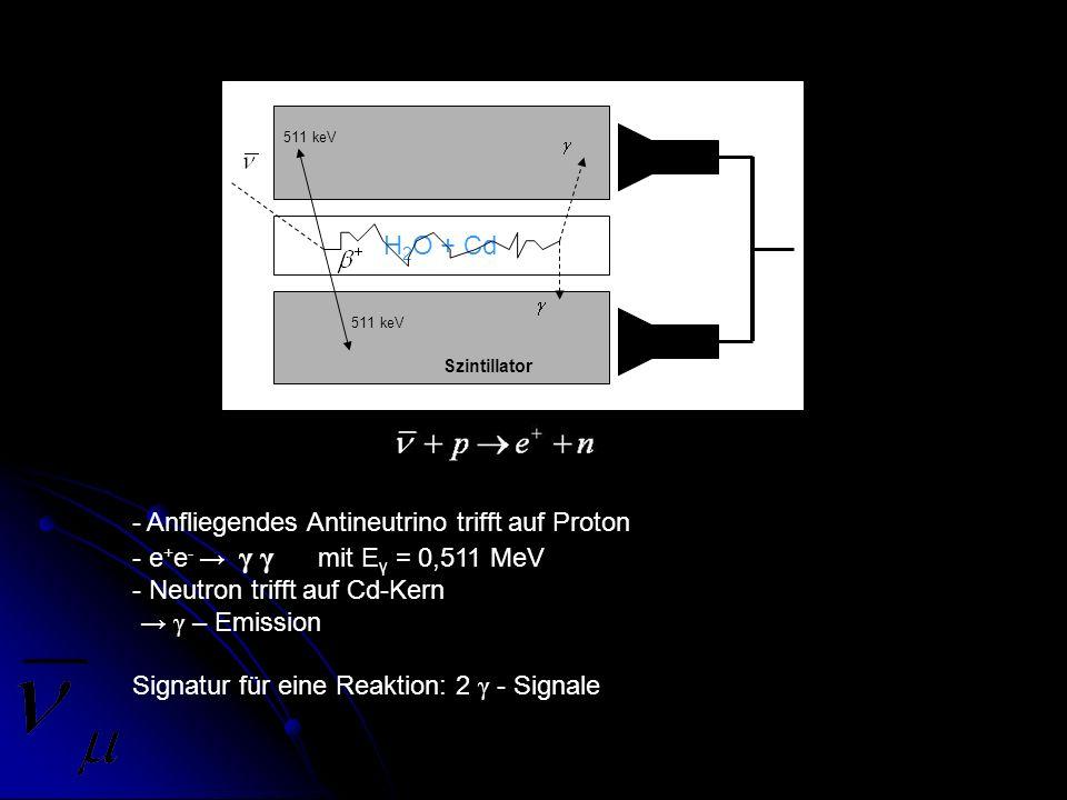H 2 O + Cd 511 keV Szintillator - Anfliegendes Antineutrino trifft auf Proton - e + e - γ γ mit E γ = 0,511 MeV - Neutron trifft auf Cd-Kern γ – Emiss