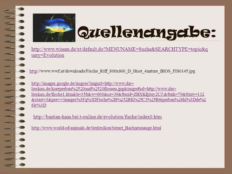 Quellenangabe: http://www.wissen.de/xt/default.do?MENUNAME=Suche&SEARCHTYPE=topic&q uery=Evolution httphttp://www.wwf.at/downloads/Fische_Riff_800x600