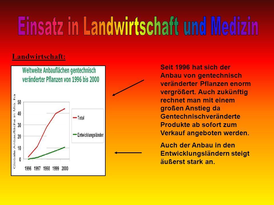 Landwirtschaft: Seit 1996 hat sich der Anbau von gentechnisch veränderter Pflanzen enorm vergrößert. Auch zukünftig rechnet man mit einem großen Ansti