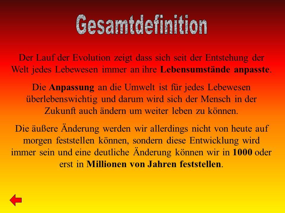Ernährung www.idw-online.de www.bundestag.de www.veda-dreams.de www.wsl.ch www.br-online.de www.mangen.lu Natureinflüsse www.iwr.de www.exonautix.de http://th03acc0185.swisswebaw ard.ch/ Encarta 2002/2004 Gentechnik www.gentechnik.de www.bmgf.gv.at www.greenpeace.org www.videoproduktionen.ch Encarta 2002/2003