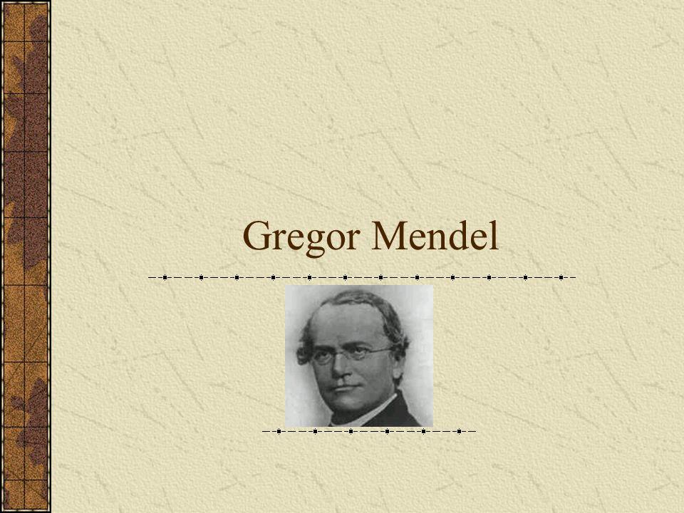 Übersicht 1.Seite: Lebenslauf von Gregor MendelLebenslauf von Gregor Mendel 2.