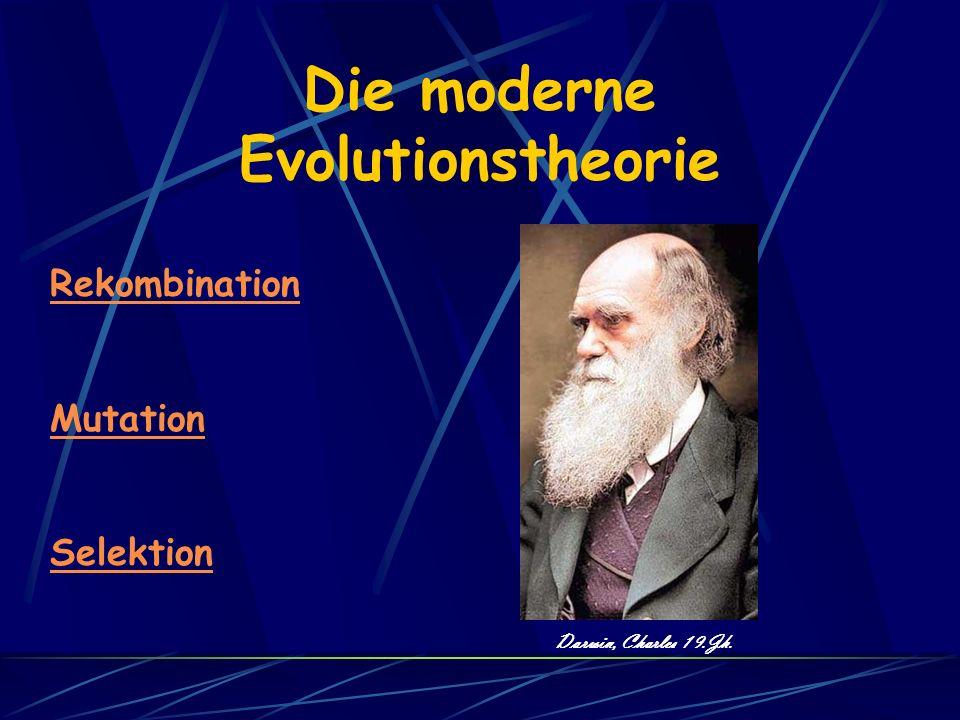Die moderne Evolutionstheorie Darwin, Charles 19.Jh. Rekombination Mutation Selektion