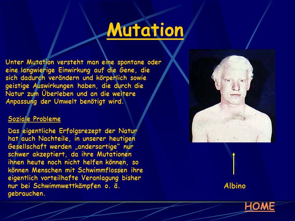 Mutation HOME Unter Mutation versteht man eine spontane oder eine langwierige Einwirkung auf die Gene, die sich dadurch verändern und körperlich sowie