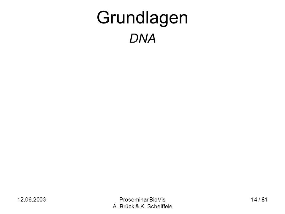 12.06.2003Proseminar BioVis A. Brück & K. Scheiffele 14 / 81 Grundlagen DNA
