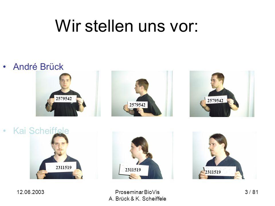 12.06.2003Proseminar BioVis A.Brück & K.