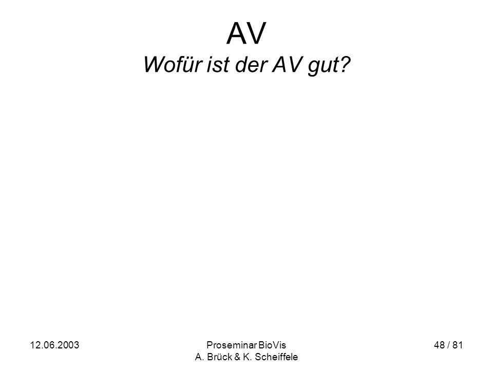12.06.2003Proseminar BioVis A. Brück & K. Scheiffele 48 / 81 AV Wofür ist der AV gut?