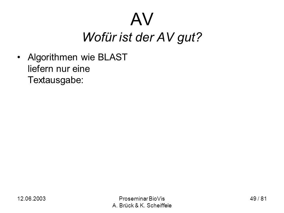 12.06.2003Proseminar BioVis A. Brück & K. Scheiffele 49 / 81 AV Wofür ist der AV gut.