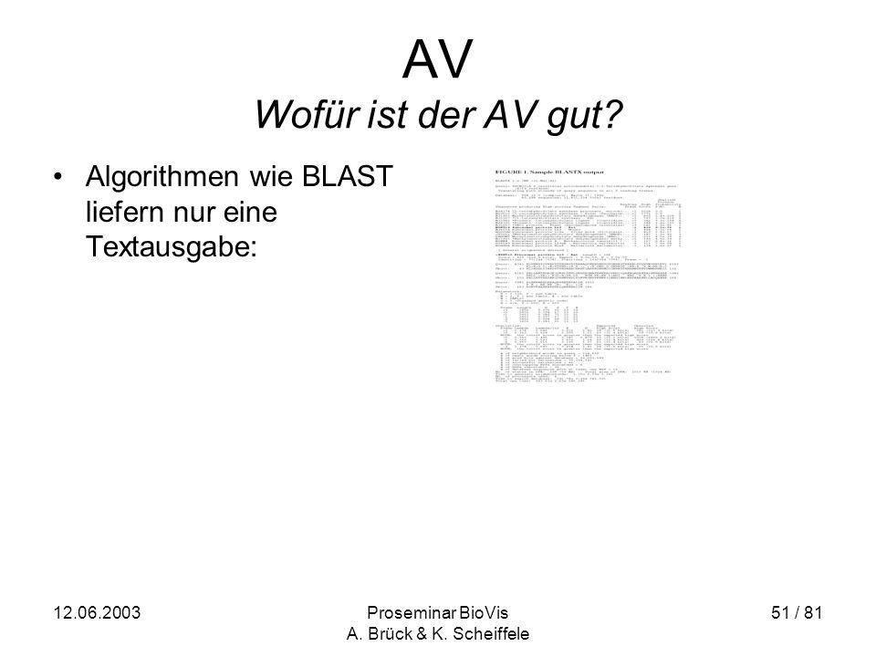 12.06.2003Proseminar BioVis A. Brück & K. Scheiffele 51 / 81 AV Wofür ist der AV gut.