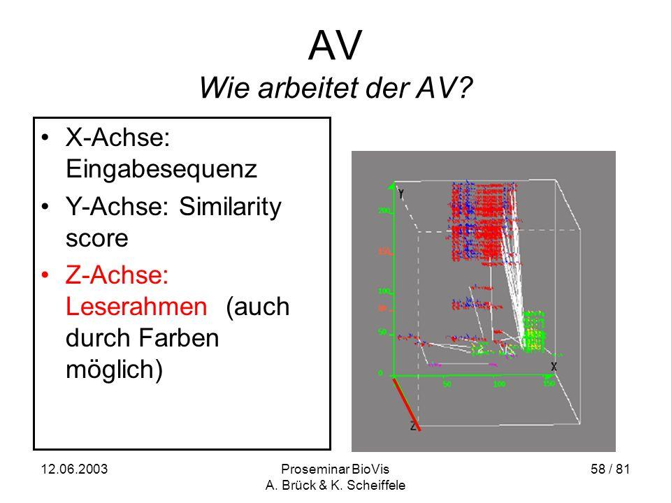12.06.2003Proseminar BioVis A. Brück & K. Scheiffele 58 / 81 AV Wie arbeitet der AV.