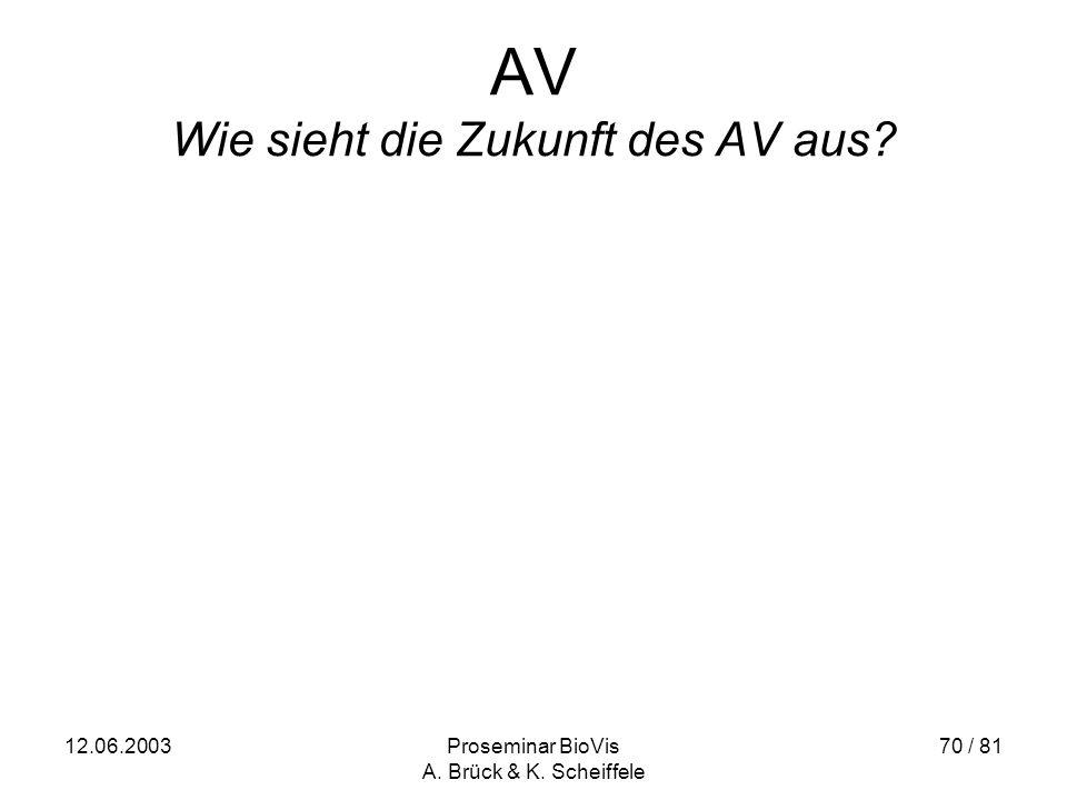 12.06.2003Proseminar BioVis A. Brück & K. Scheiffele 70 / 81 AV Wie sieht die Zukunft des AV aus?