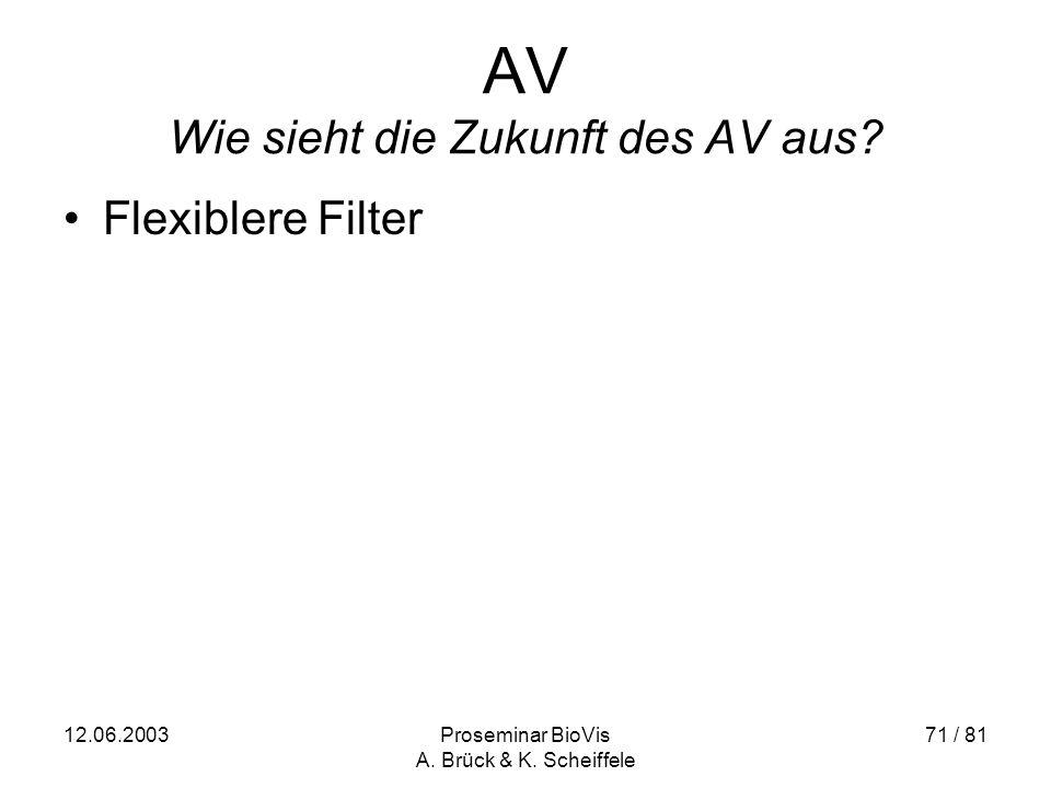 12.06.2003Proseminar BioVis A. Brück & K. Scheiffele 71 / 81 AV Wie sieht die Zukunft des AV aus.