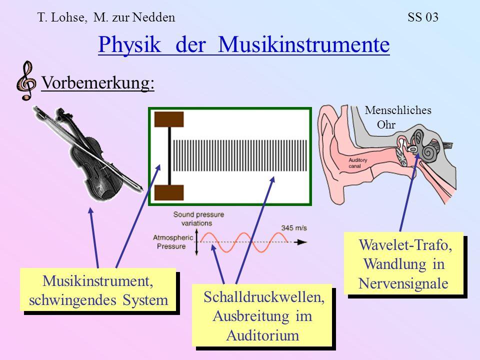 Physikalische Grundlagen: Schwingungen / Wellen in festen / gasförmigen elastischen Medien Hydrodynamik Lineare und nichtlineare Schwingungen Beispiele schwingender Systeme: Saiten Geige, Gittarre, Klavier,...