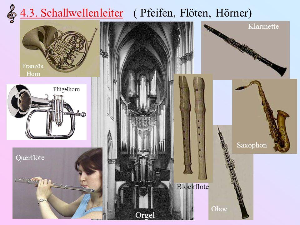 Orgel 4.3. Schallwellenleiter ( Pfeifen, Flöten, Hörner) Französ. Horn Flügelhorn Querflöte Oboe Klarinette Blockflöte Saxophon