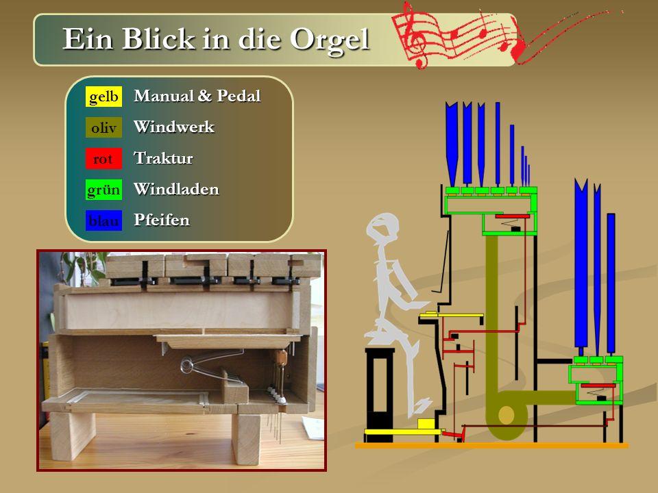 Ein Blick in die Orgel Ein Blick in die Orgel Manual & Pedal gelb Windwerk Traktur Windladen Pfeifen oliv rot grün blau