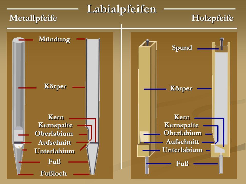 LabialpfeifenMetallpfeifeHolzpfeife Mündung Körper Körper Spund KernKern KernspalteKernspalte Oberlabium Oberlabium Aufschnitt Aufschnitt Unterlabium