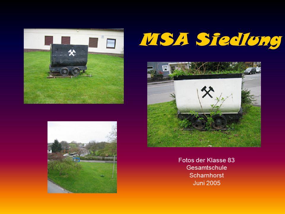 MSA Siedlung Fotos der Klasse 83 Gesamtschule Scharnhorst Juni 2005