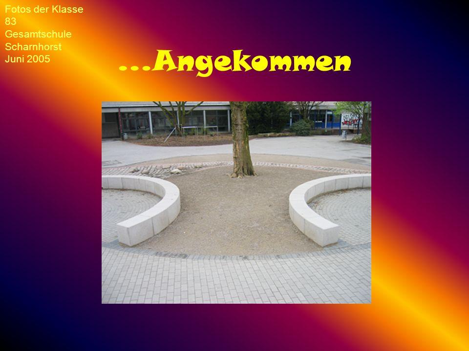 ...Angekommen Fotos der Klasse 83 Gesamtschule Scharnhorst Juni 2005