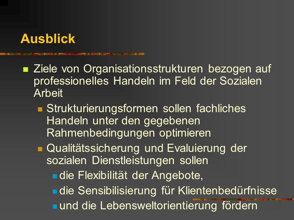Ausblick Ziele von Organisationsstrukturen bezogen auf professionelles Handeln im Feld der Sozialen Arbeit Strukturierungsformen sollen fachliches Han