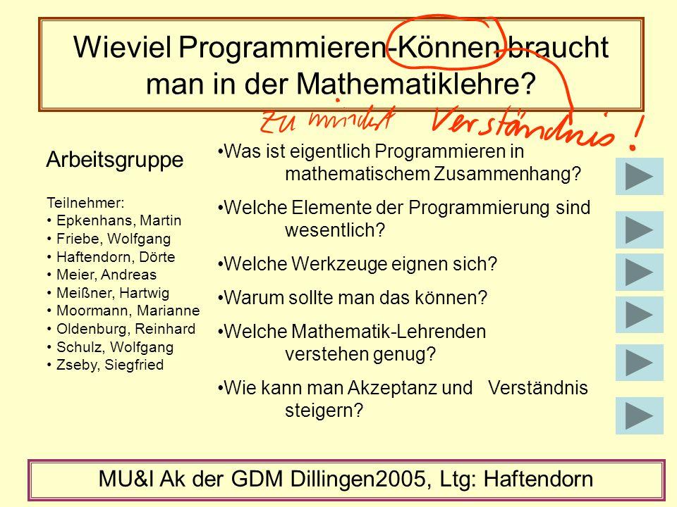 Wieviel Programmieren-Können braucht man in der Mathematiklehre.