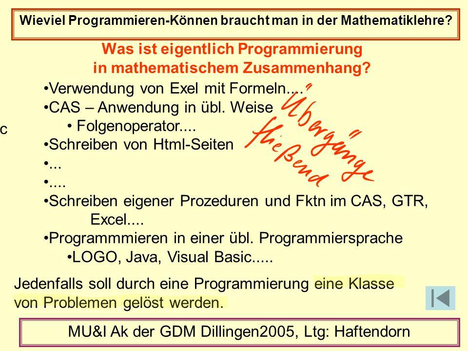 Verwendung von Exel mit Formeln.... CAS – Anwendung in übl.