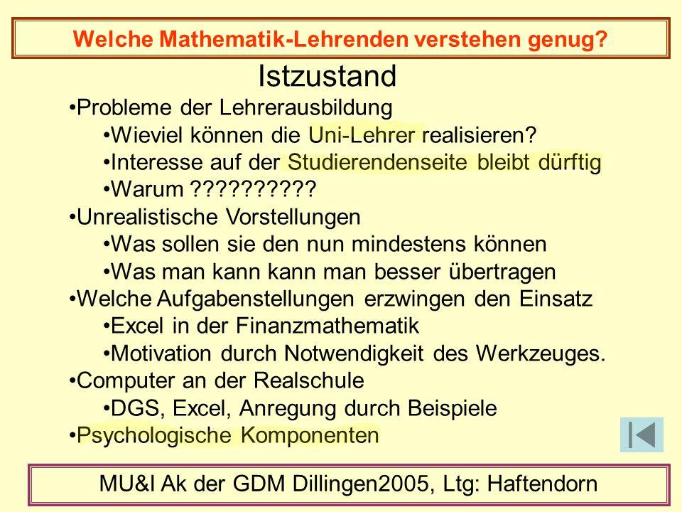 Welche Mathematik-Lehrenden verstehen genug.
