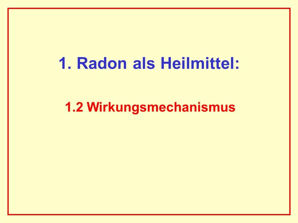 AAAAAAAAA BBBBBBBBBB AAAAAAAAA 1. Radon als Heilmittel: 1.2 Wirkungsmechanismus