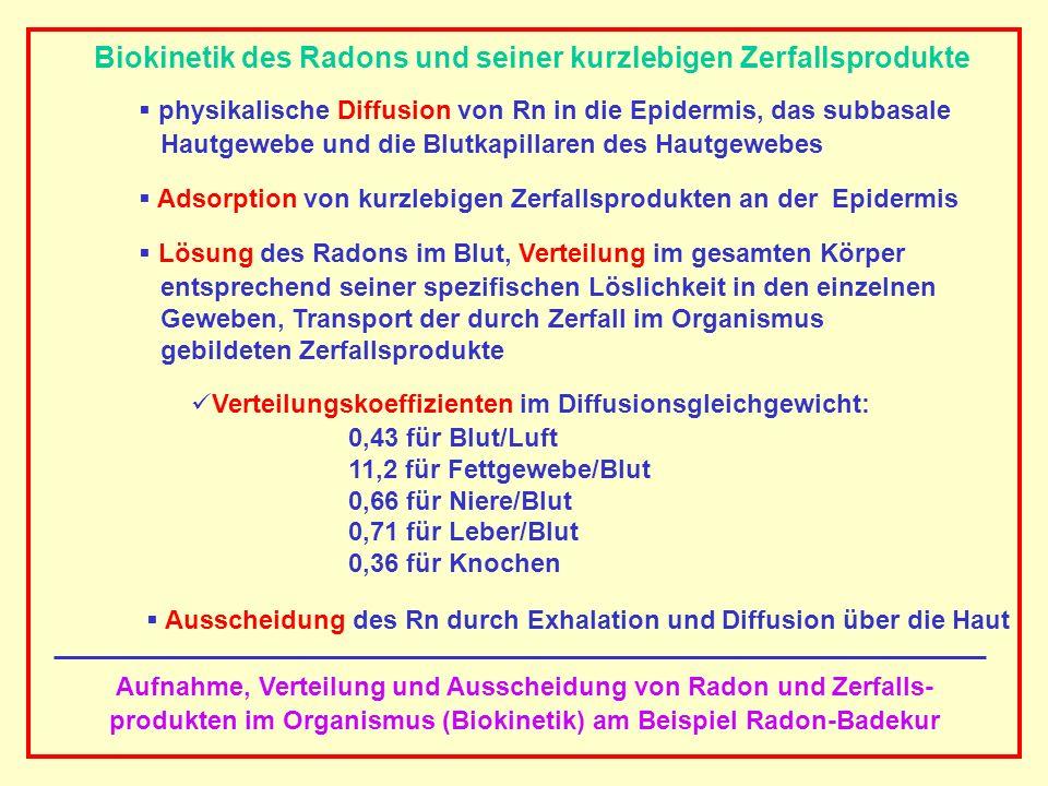 AAAAAAAAA BBBBBBBBBB AAAAAAAAA Aufnahme, Verteilung und Ausscheidung von Radon und Zerfalls- produkten im Organismus (Biokinetik) am Beispiel Radon-Ba