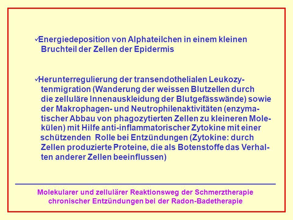 AAAAAAAAA BBBBBBBBBB AAAAAAAAA Molekularer und zellulärer Reaktionsweg der Schmerztherapie chronischer Entzündungen bei der Radon-Badetherapie Energie