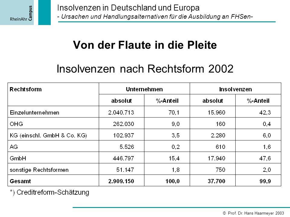 Von der Flaute in die Pleite Insolvenzen nach Rechtsform 2002 Insolvenzen in Deutschland und Europa - Ursachen und Handlungsalternativen für die Ausbi