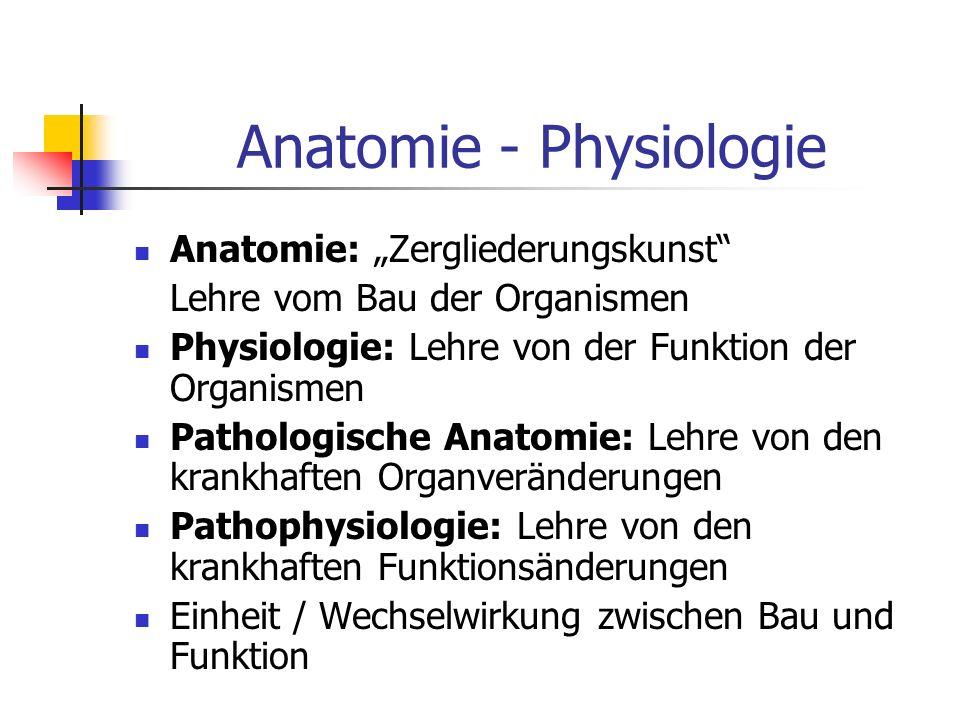 Anatomie - Physiologie Anatomie: Zergliederungskunst Lehre vom Bau der Organismen Physiologie: Lehre von der Funktion der Organismen Pathologische Ana