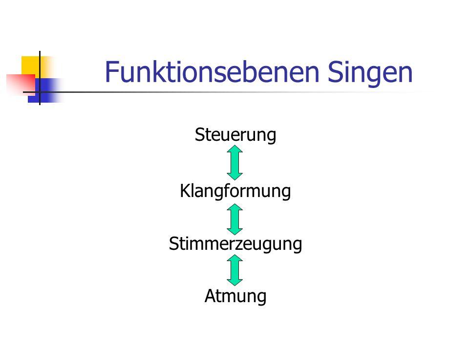 Funktionsebenen Singen Steuerung Klangformung Stimmerzeugung Atmung