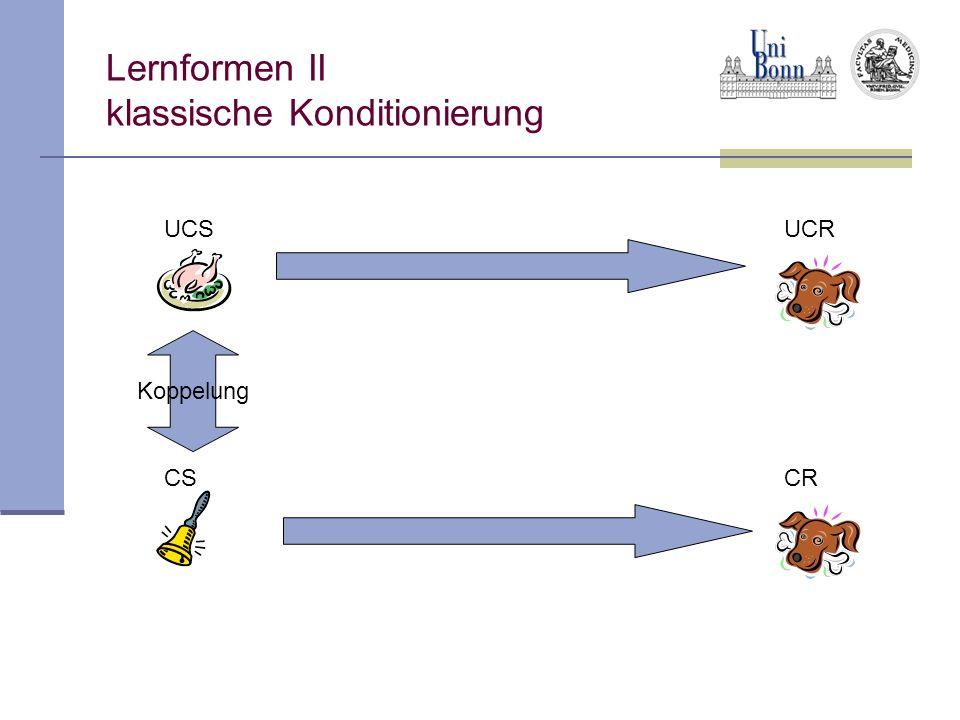 Lernformen II klassische Konditionierung UCSUCR CSCR Koppelung