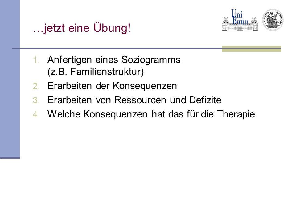 …jetzt eine Übung! 1. Anfertigen eines Soziogramms (z.B. Familienstruktur) 2. Erarbeiten der Konsequenzen 3. Erarbeiten von Ressourcen und Defizite 4.
