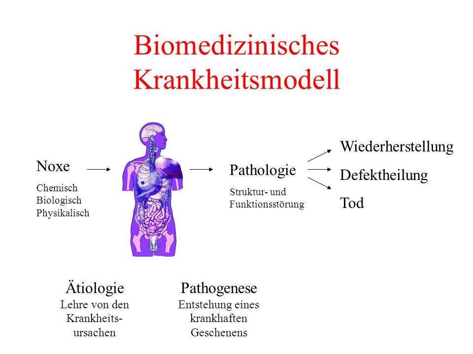 Biomedizinisches Krankheitsmodell Noxe Chemisch Biologisch Physikalisch Pathologie Struktur- und Funktionsstörung Wiederherstellung Defektheilung Tod