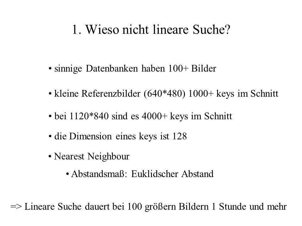 1. Wieso nicht lineare Suche? sinnige Datenbanken haben 100+ Bilder kleine Referenzbilder (640*480) 1000+ keys im Schnitt die Dimension eines keys ist
