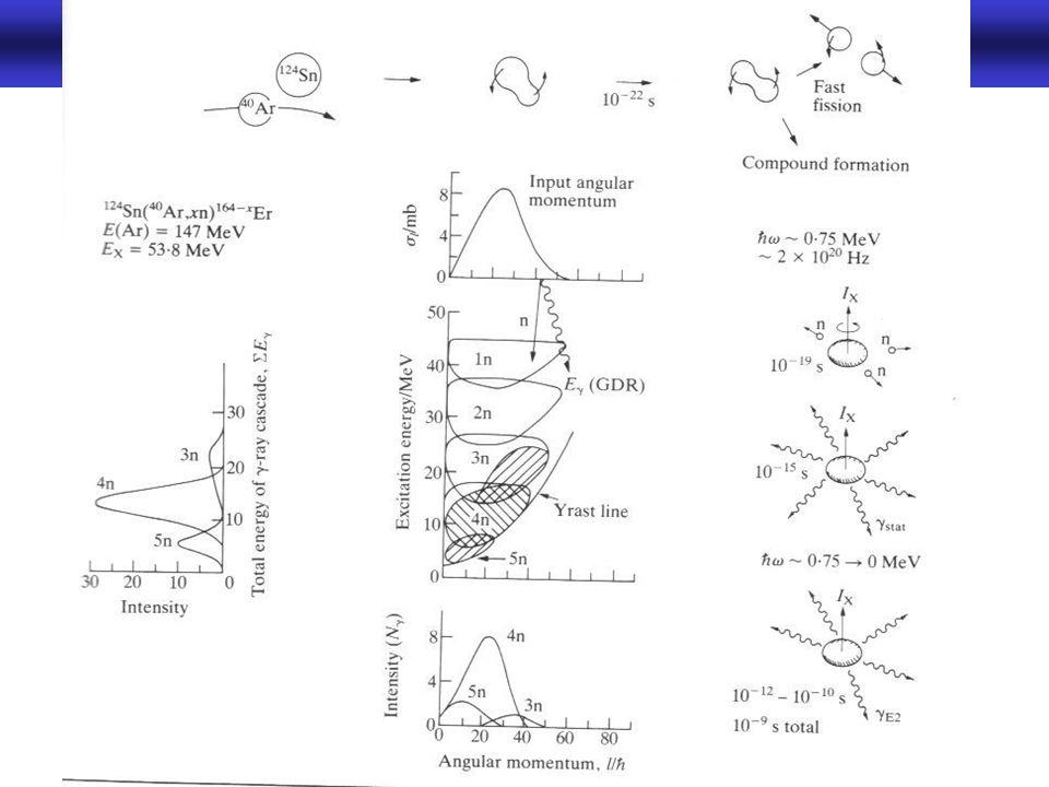 Rotationsbanden in der Gammaspektroskopie -10-