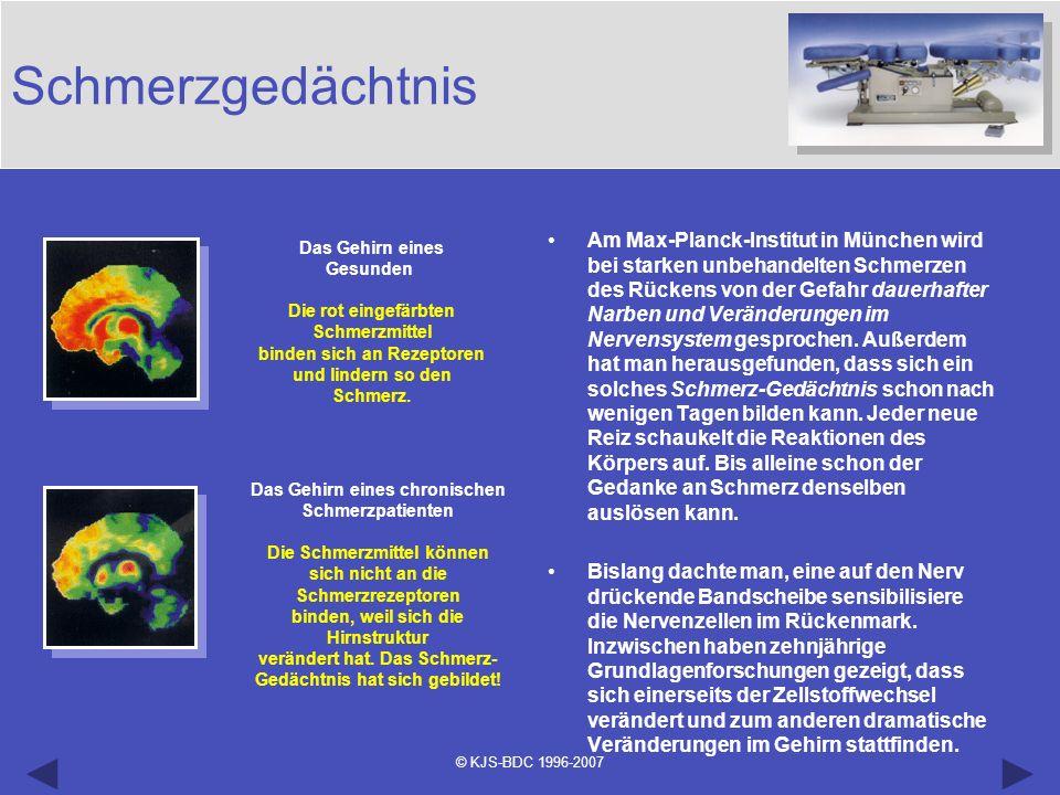 © KJS-BDC 1996-2007 Am Max-Planck-Institut in München wird bei starken unbehandelten Schmerzen des Rückens von der Gefahr dauerhafter Narben und Verän