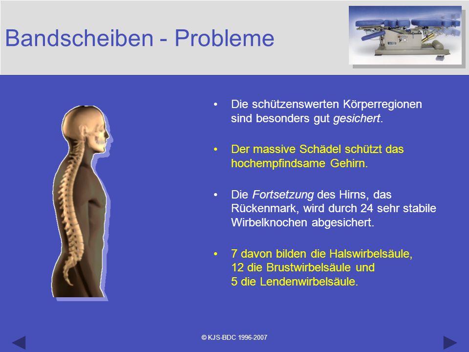 © KJS-BDC 1996-2007 Bandscheiben - Probleme Die schützenswerten Körperregionen sind besonders gut gesichert. Der massive Schädel schützt das hochempfi