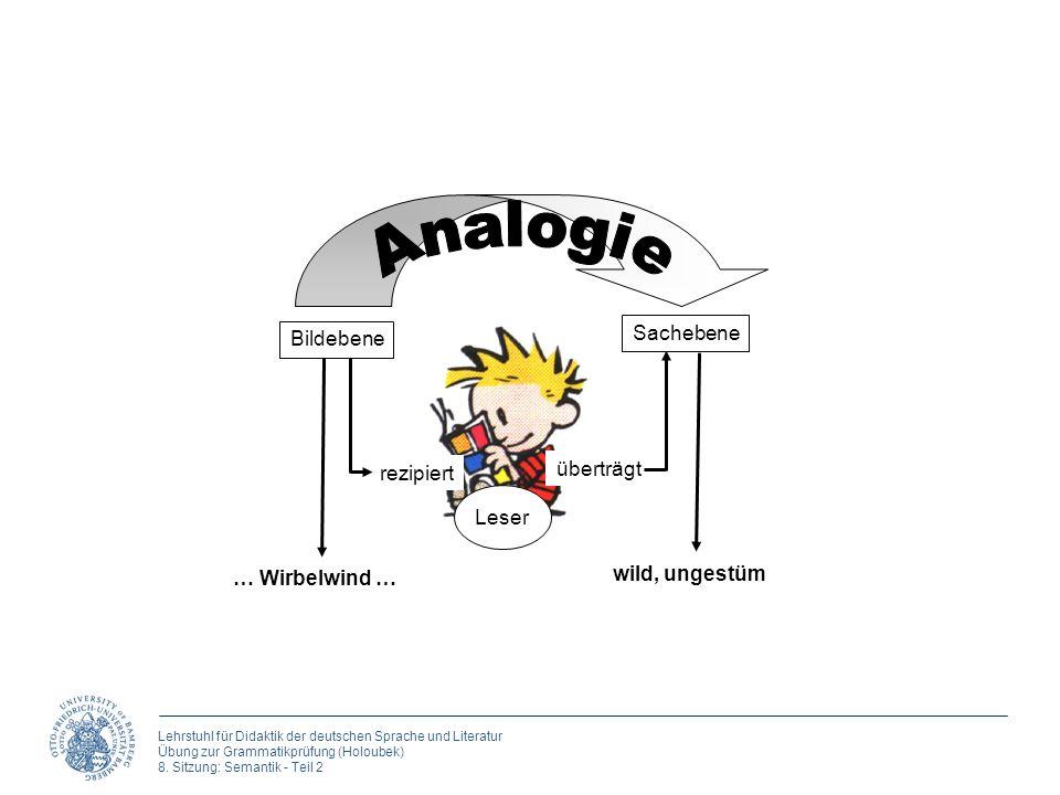 Lehrstuhl für Didaktik der deutschen Sprache und Literatur Übung zur Grammatikprüfung (Holoubek) 8. Sitzung: Semantik - Teil 2 … Wirbelwind … Leser Bi