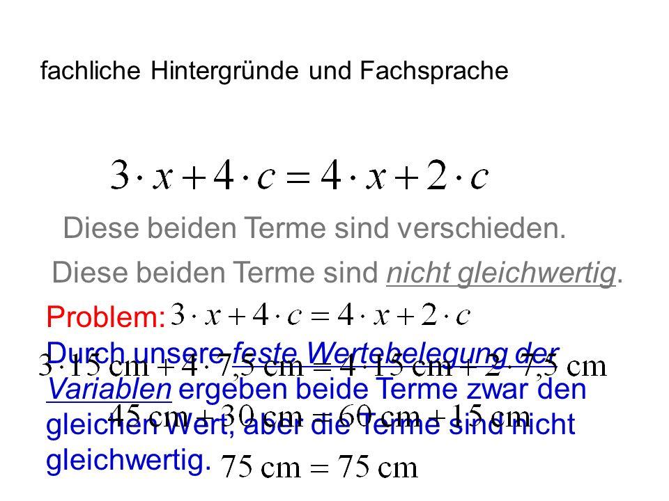 IQSH fachliche Hintergründe und Fachsprache Exkurs: Die Lösungsmenge dieser Gleichungen ist L = { 17 }.