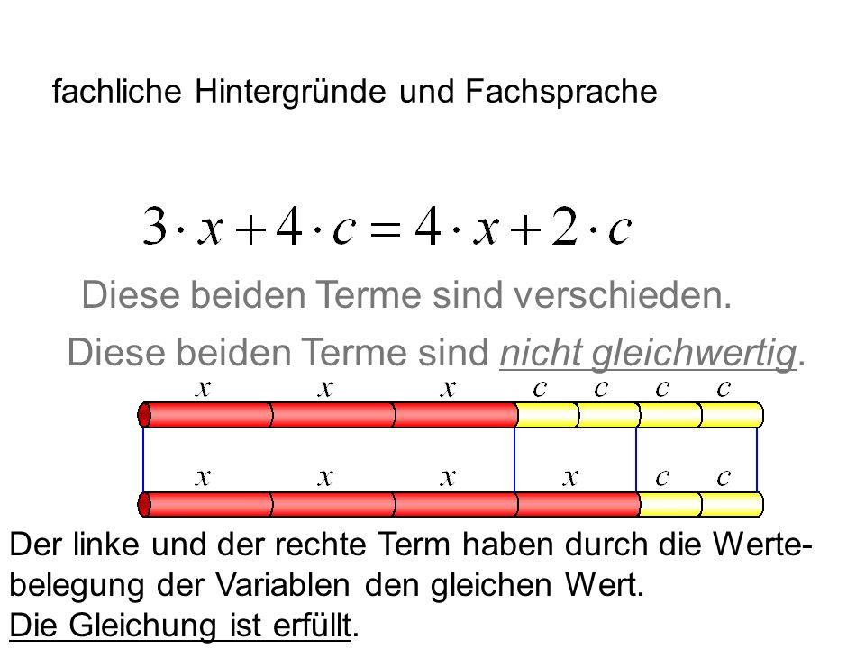 IQSH fachliche Hintergründe und Fachsprache Vorschlag: Für Terme den Begriff gleichwertig verwenden.