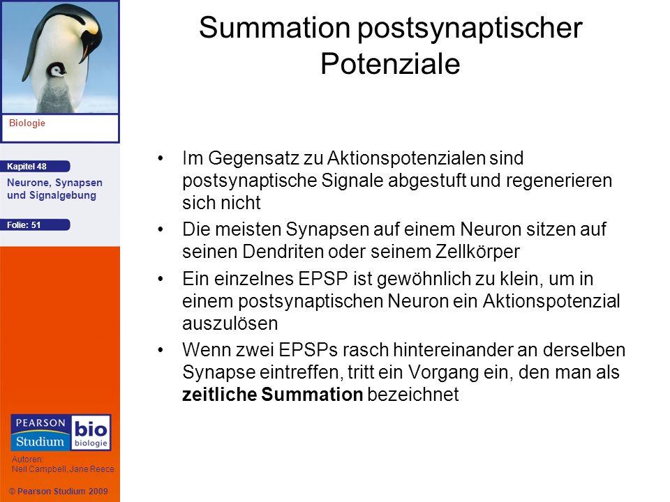 © Pearson Studium 2009 Kapitel 48 Biologie Autoren: Neil Campbell, Jane Reece Neurone, Synapsen und Signalgebung Folie: 51 Summation postsynaptischer
