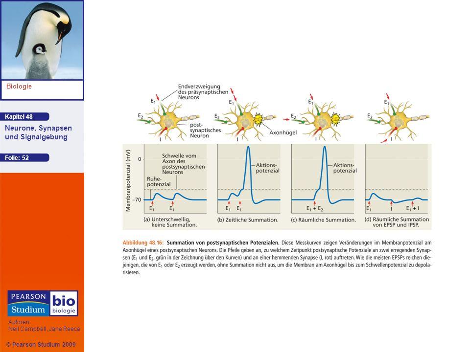 Kapitel 48 Biologie Autoren: Neil Campbell, Jane Reece Neurone, Synapsen und Signalgebung © Pearson Studium 2009 Folie: 52
