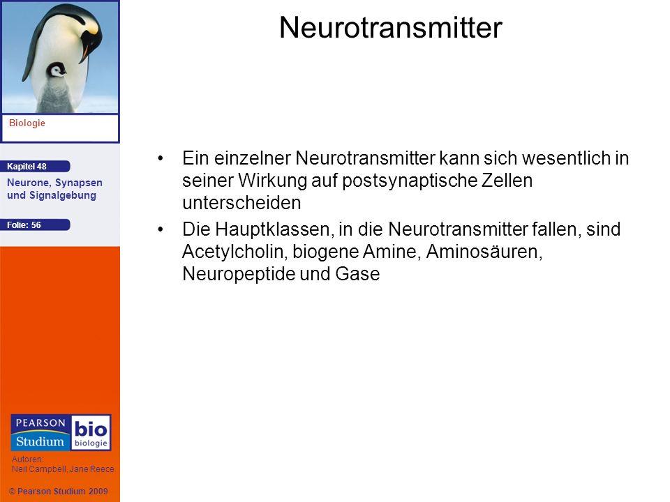 © Pearson Studium 2009 Kapitel 48 Biologie Autoren: Neil Campbell, Jane Reece Neurone, Synapsen und Signalgebung Folie: 56 Neurotransmitter Ein einzel