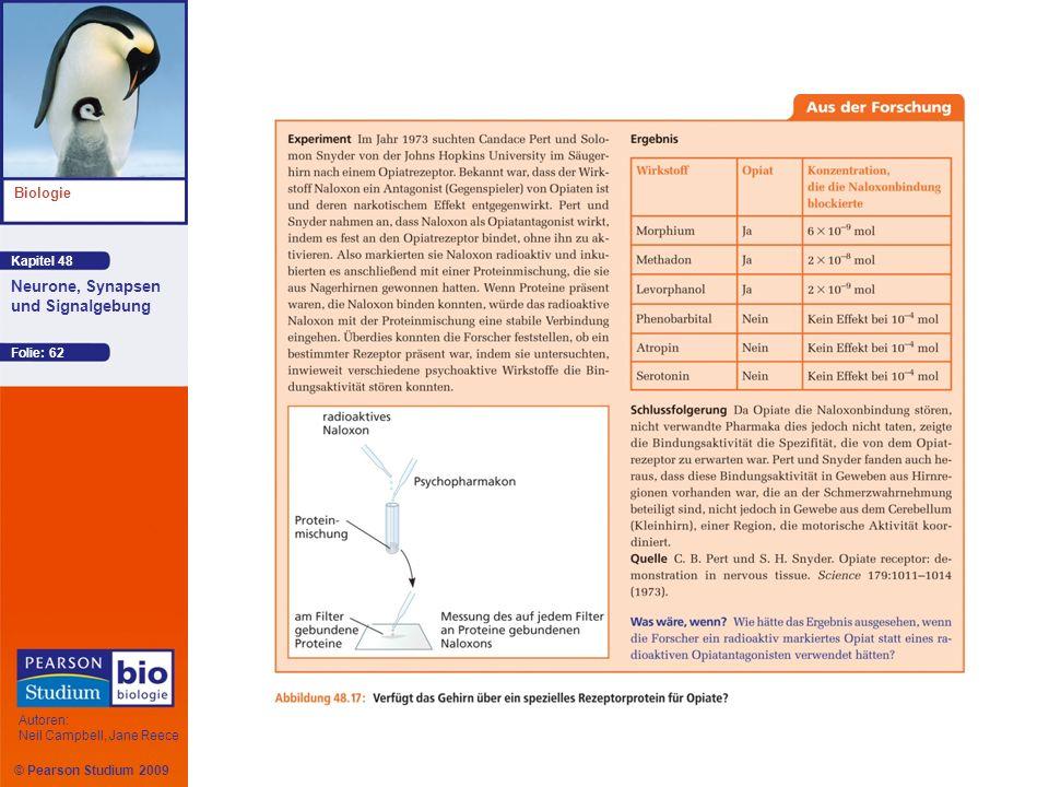Kapitel 48 Biologie Autoren: Neil Campbell, Jane Reece Neurone, Synapsen und Signalgebung © Pearson Studium 2009 Folie: 62