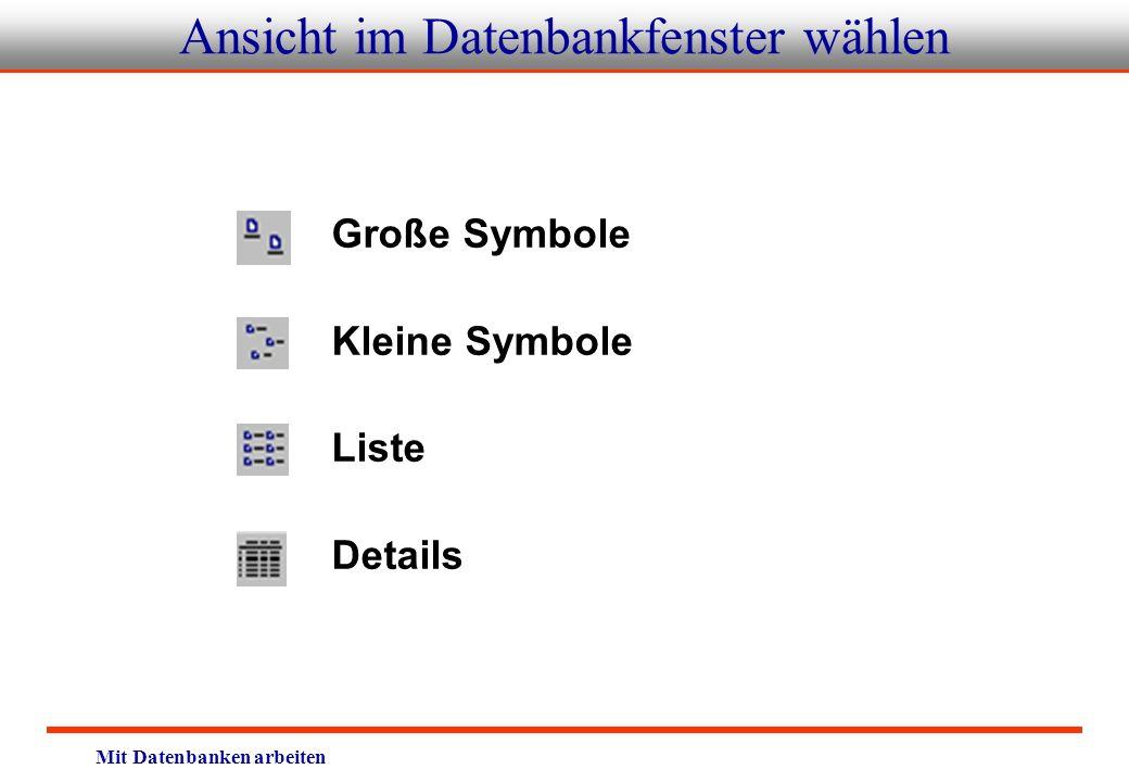 Mit Datenbanken arbeiten Ansicht im Datenbankfenster wählen Große Symbole Kleine Symbole Liste Details