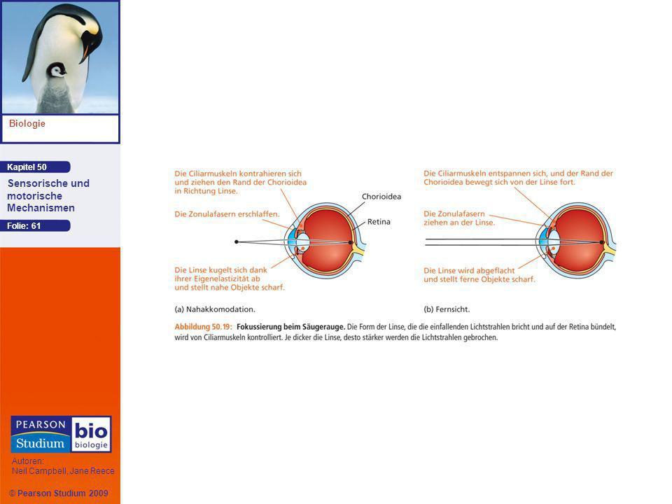 Kapitel 50 Biologie Autoren: Neil Campbell, Jane Reece Sensorische und motorische Mechanismen © Pearson Studium 2009 Folie: 61