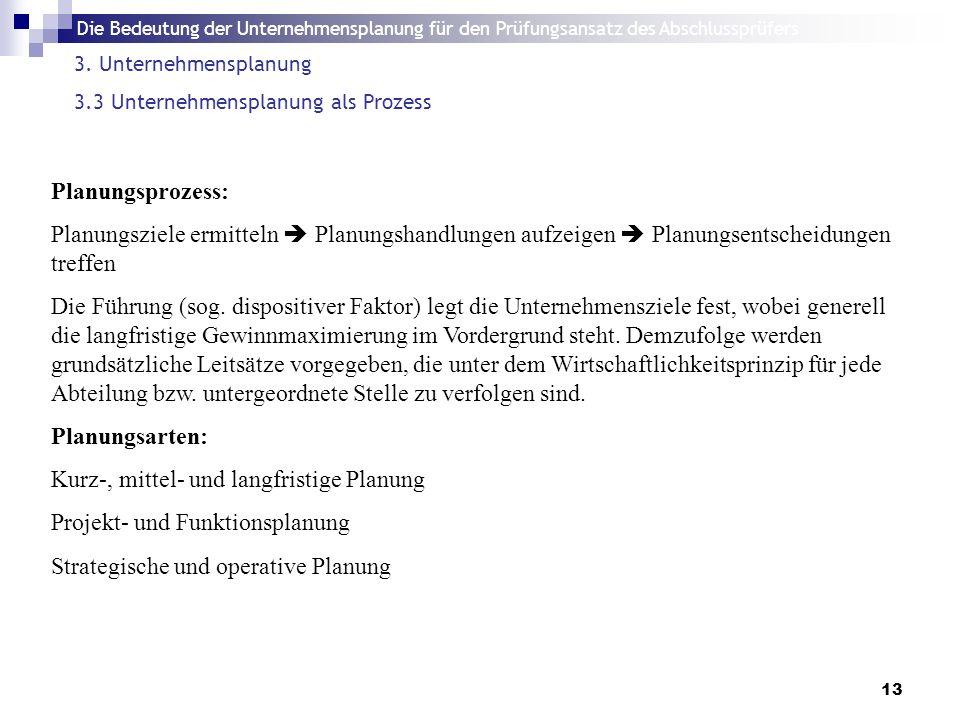 Die Bedeutung der Unternehmensplanung für den Prüfungsansatz des Abschlussprüfers 13 3.