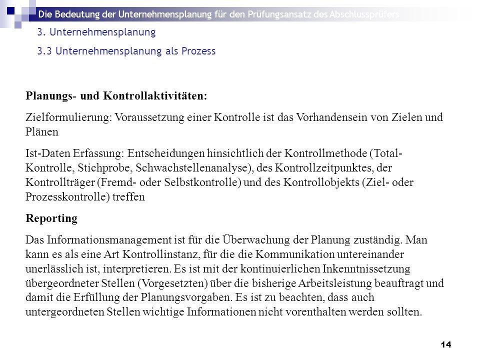 Die Bedeutung der Unternehmensplanung für den Prüfungsansatz des Abschlussprüfers 14 3.