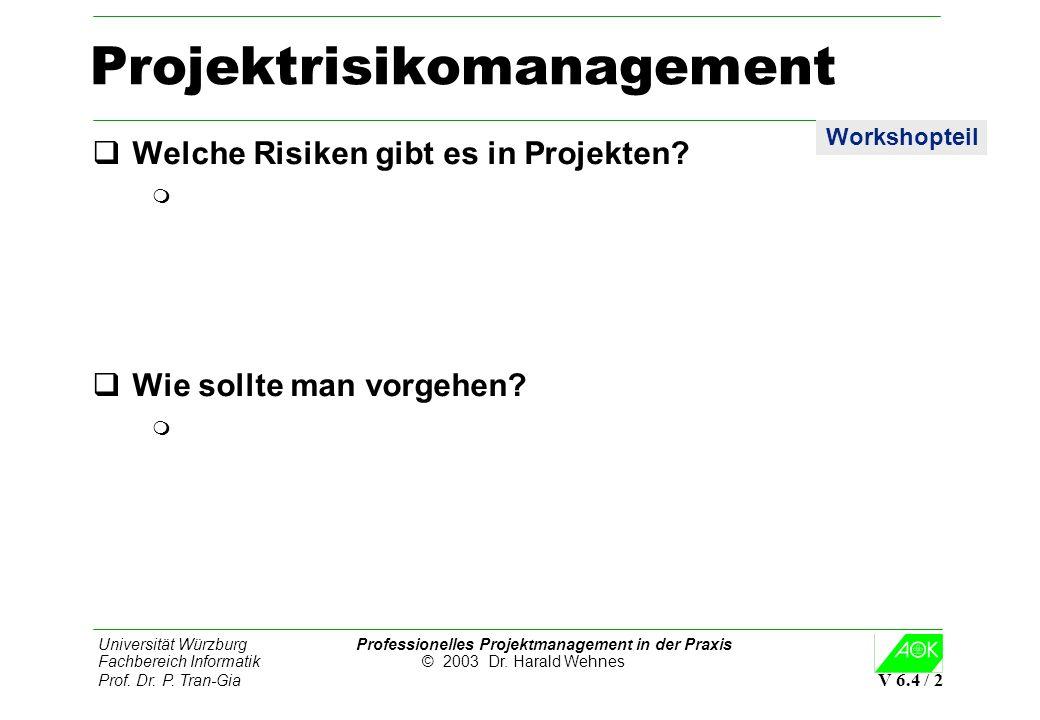 Universität Würzburg Professionelles Projektmanagement in der Praxis Fachbereich Informatik © 2003 Dr. Harald Wehnes Prof. Dr. P. Tran-Gia V 6.4 / 2 P